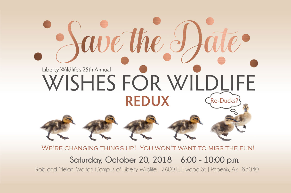 Save the Date.  Wishes for Wildlife Redux